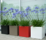 Fibreglass Square Pots
